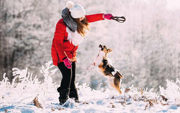 Tipps damit Ihr Hund im Winter nicht friert