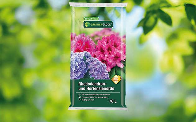 gartenkraft Rhododendron- und Hortensienerde