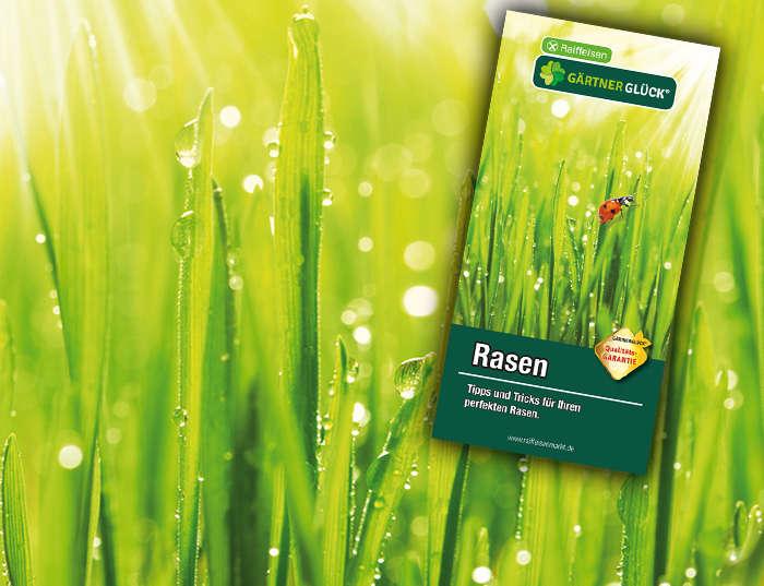 Raiffeisen GÄRTNERGL&Üuml;CK Rasen
