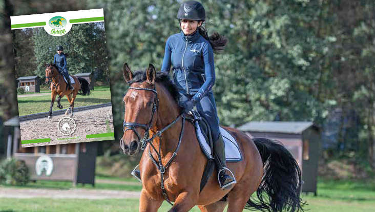 Galopp Pferdefutter Programm 2021