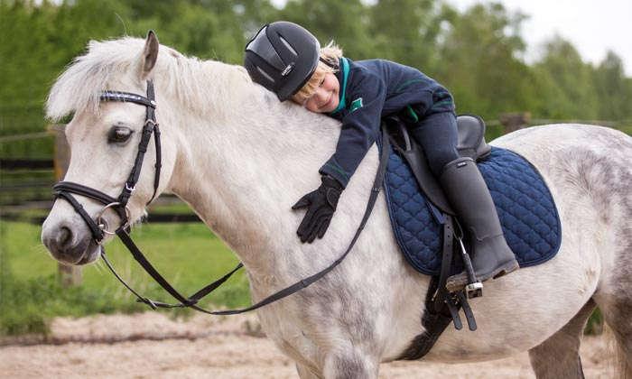 Unser Pferd und Reiter - Ratgeber auf www.raiffeisenmarkt.de