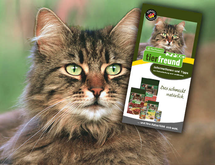 Raiffeisen tierfreund Flyer - Katzenhaltung und -ernährung