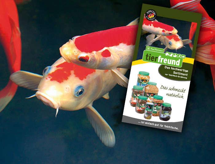 Raifeisen tierfreund - Teichfisch-Ernährung