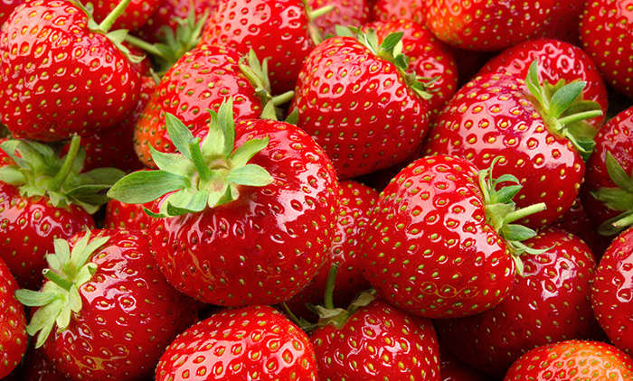 Die besten Erdbeeren aus dem eigenem Garten