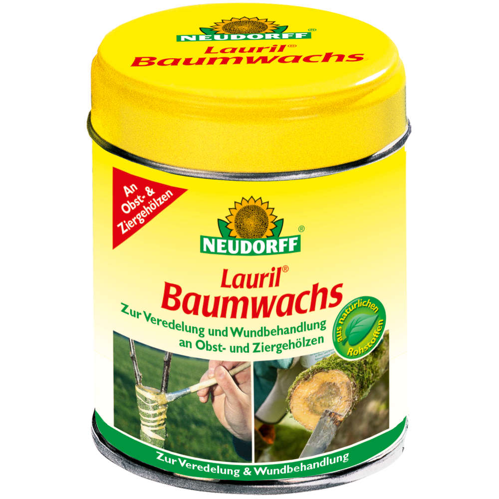 Lauril Baumwachs
