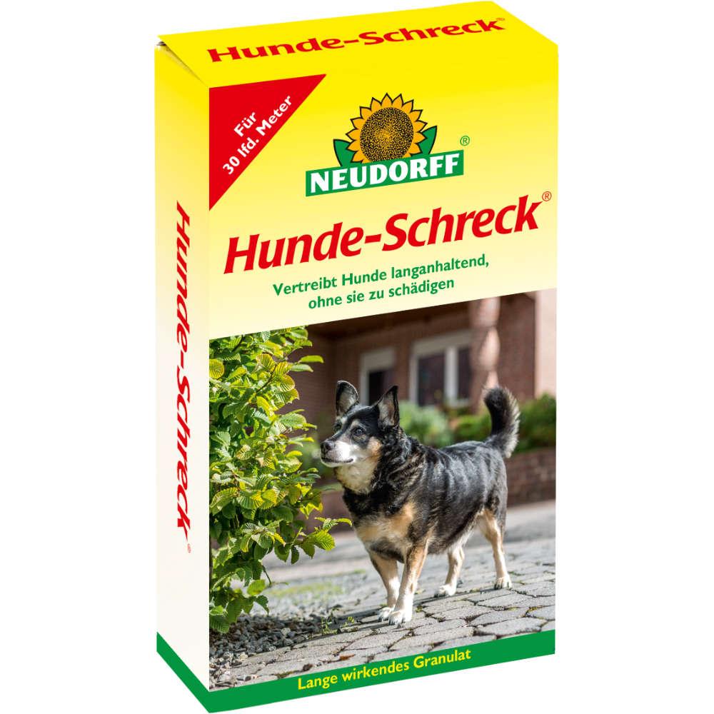 Hunde-Schreck