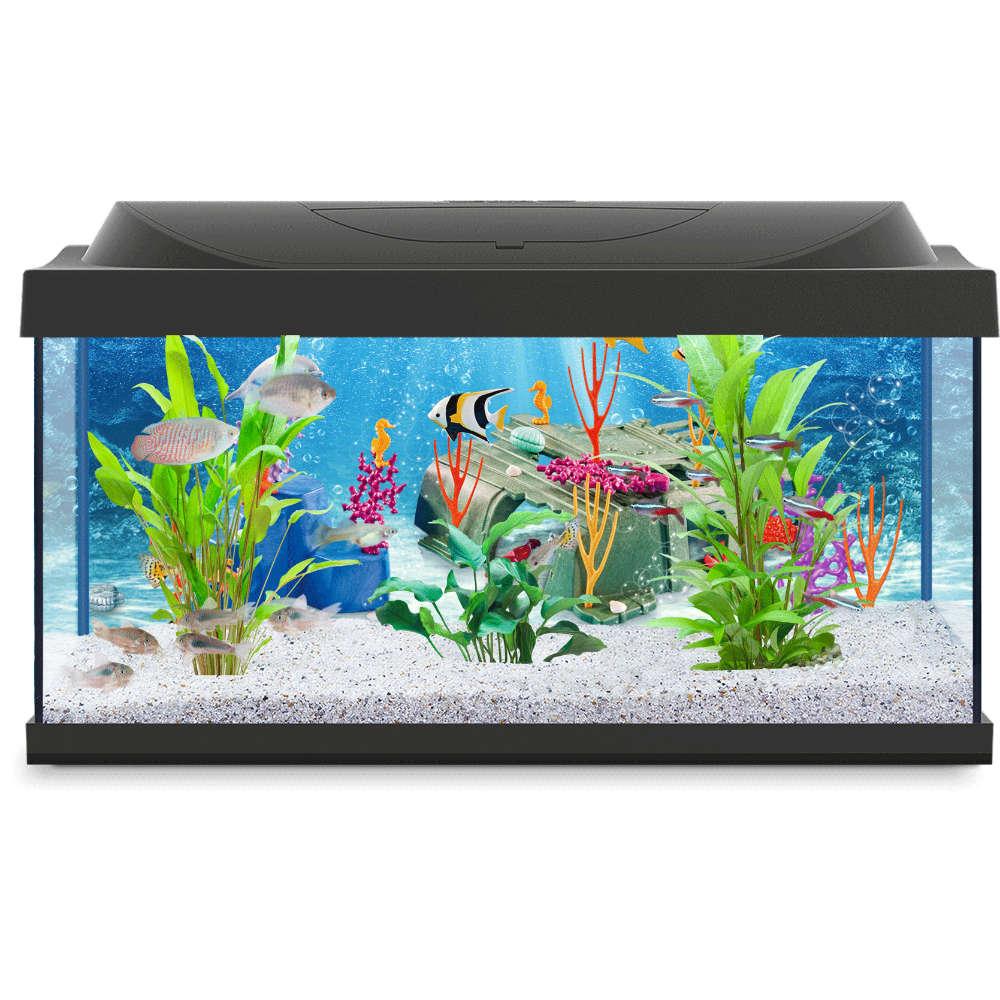 Tetra Aquarium Playmobil