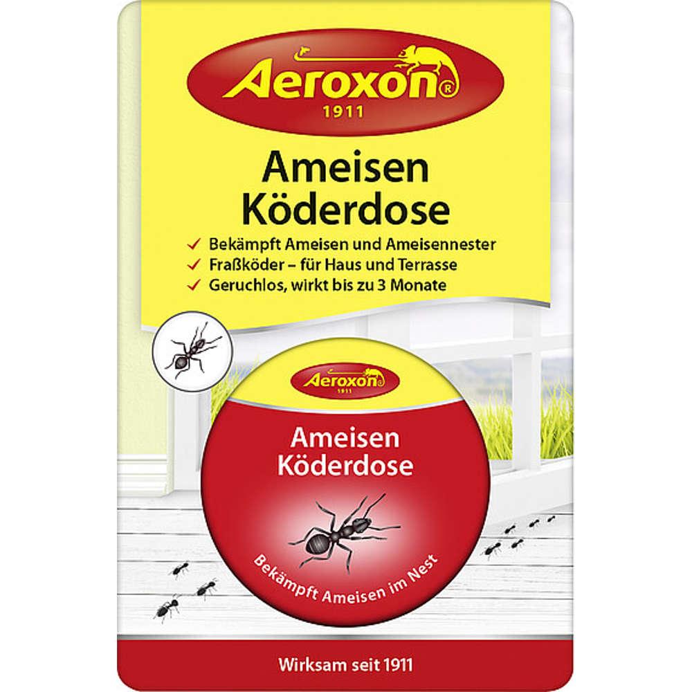 Ameisen-Koederdose