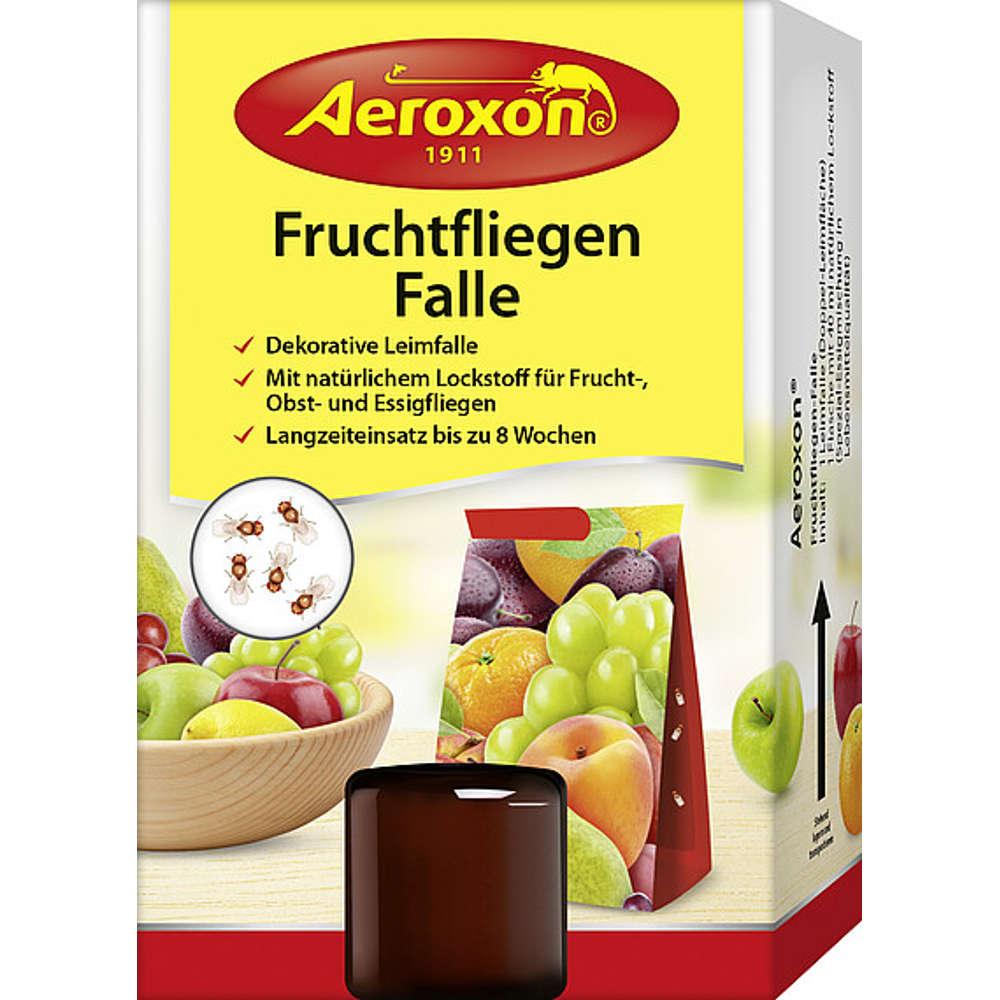 Fruchtfliegen-Falle