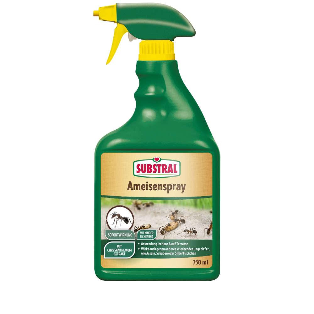 Ameisenspray