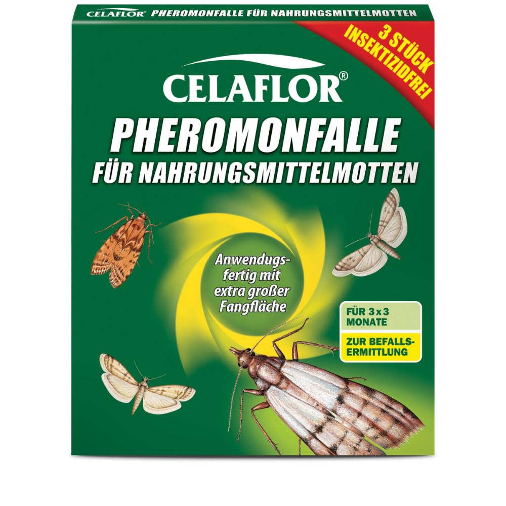 Pheromon-Falle fuer Nahrungsmittelmotten