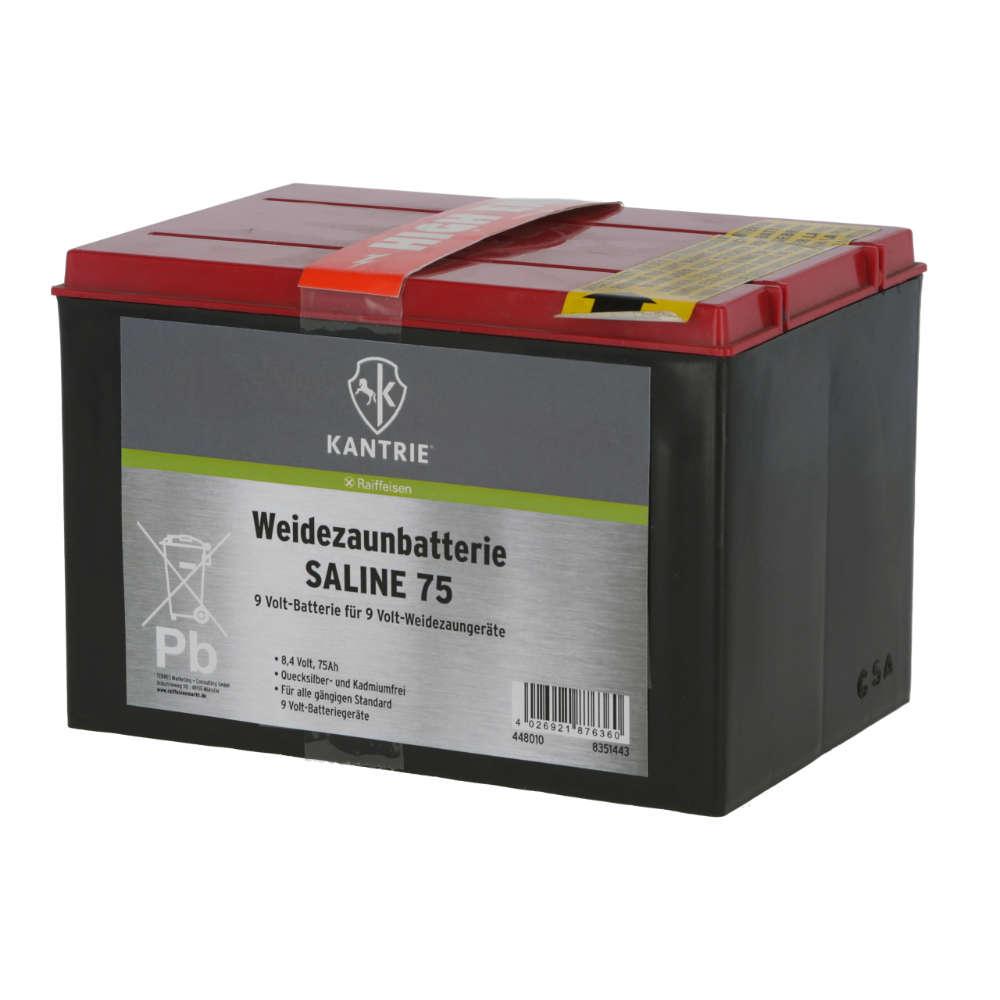 KANTRIE Weidezaunbatterie SALINE