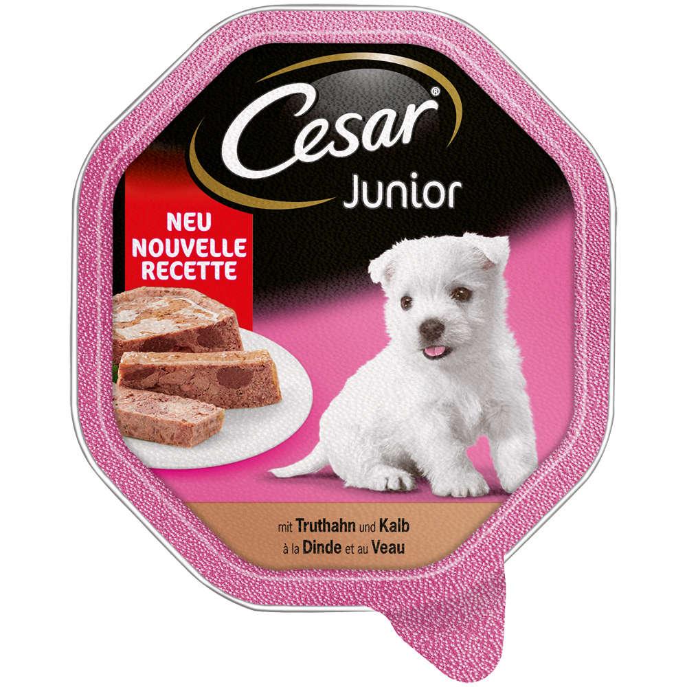CESAR Junior Truthahn & Kalb in Pastete