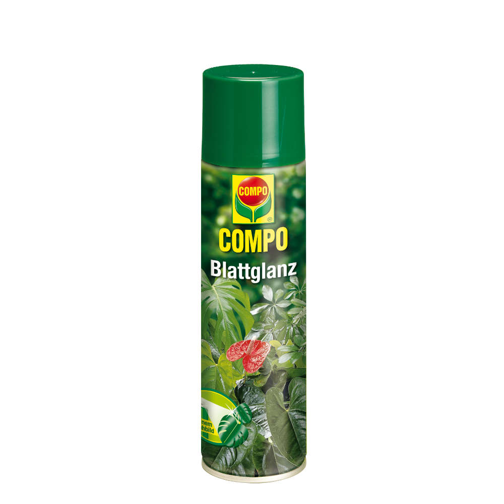 COMPO Blattglanz - Gartenduenger