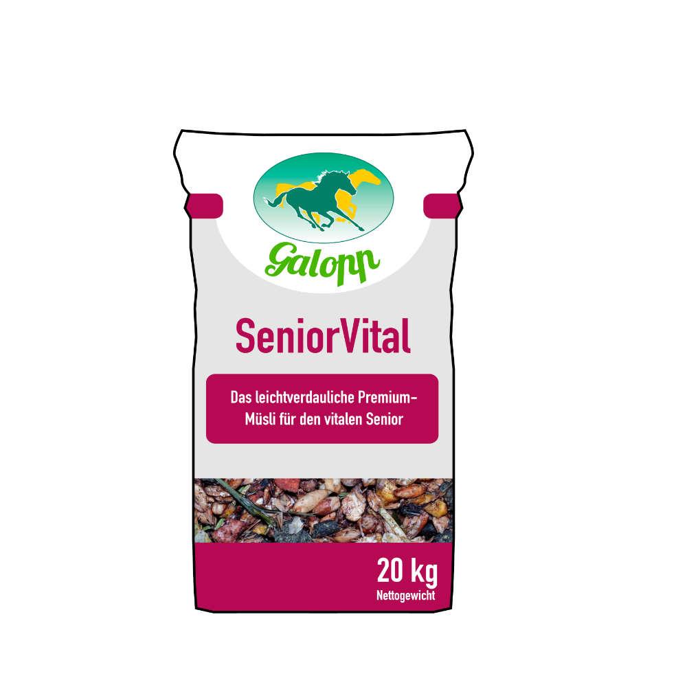 Galopp SeniorVital