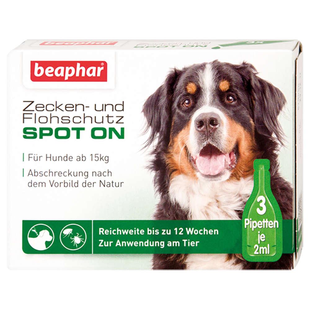 Grafik für Beaphar Zecken- und Flohschutz SPOT-ON 3 x 2 ml in raiffeisenmarkt.de