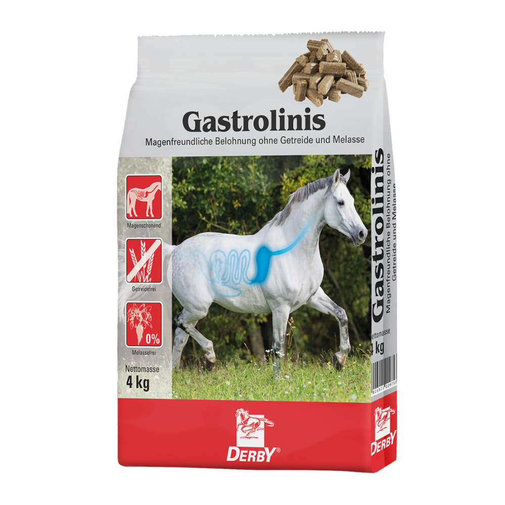 Derby Gastrolinis