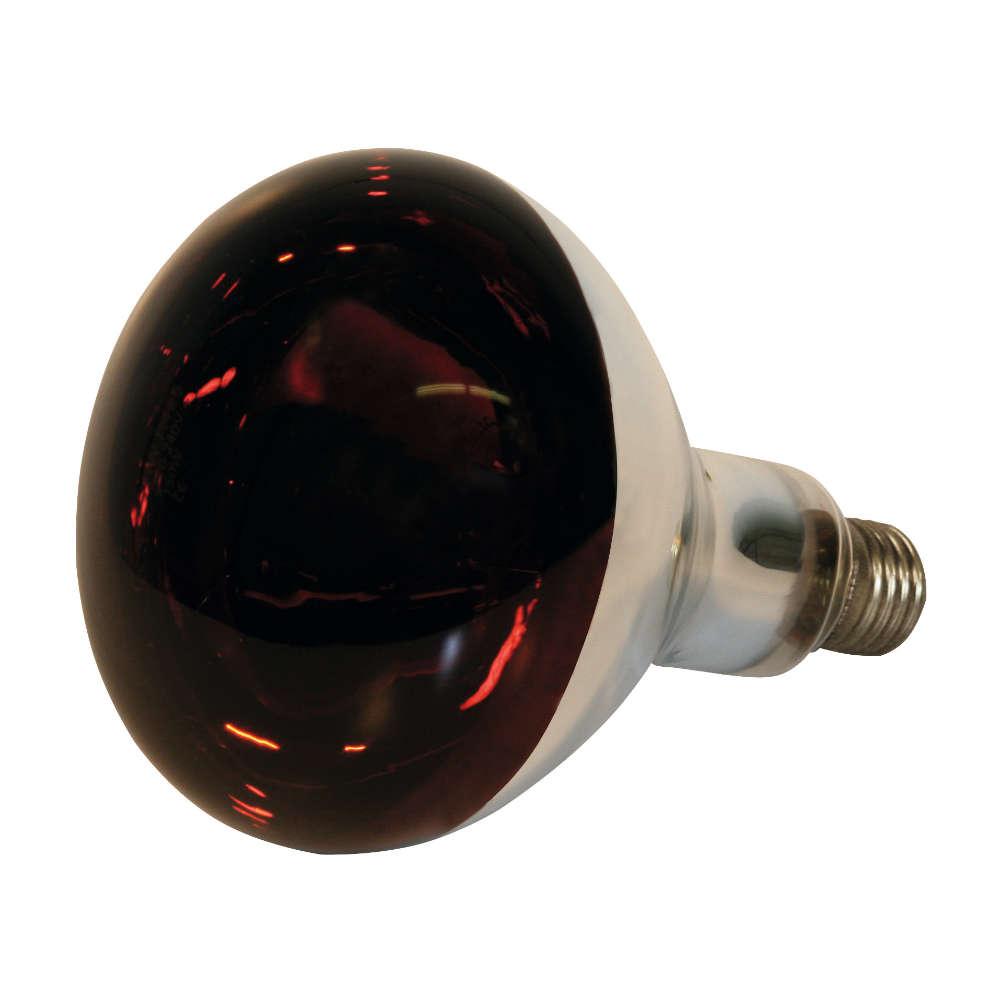 KERBL Hartglas-Infrarotlampe Kerbl - Gefluegelhaltung