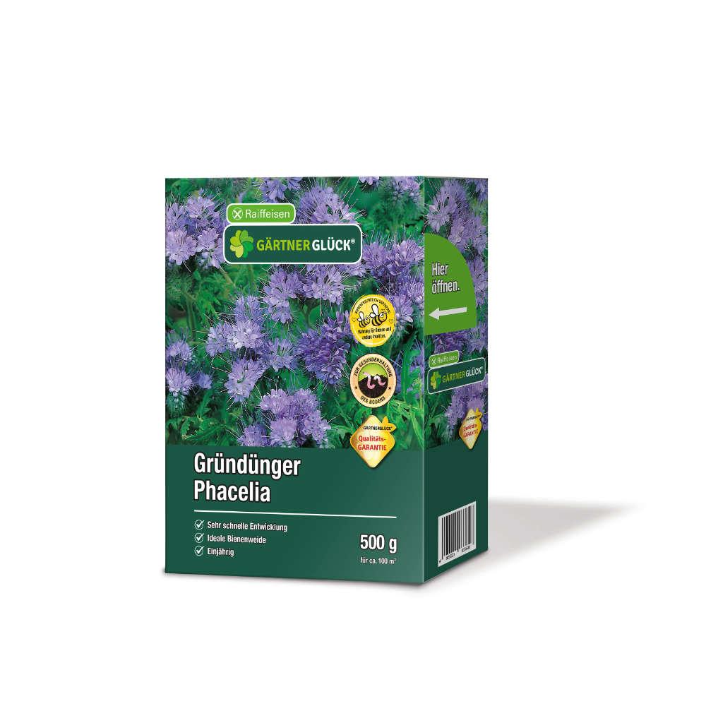 GÄRTNERGLÜCK Premium Phacelia