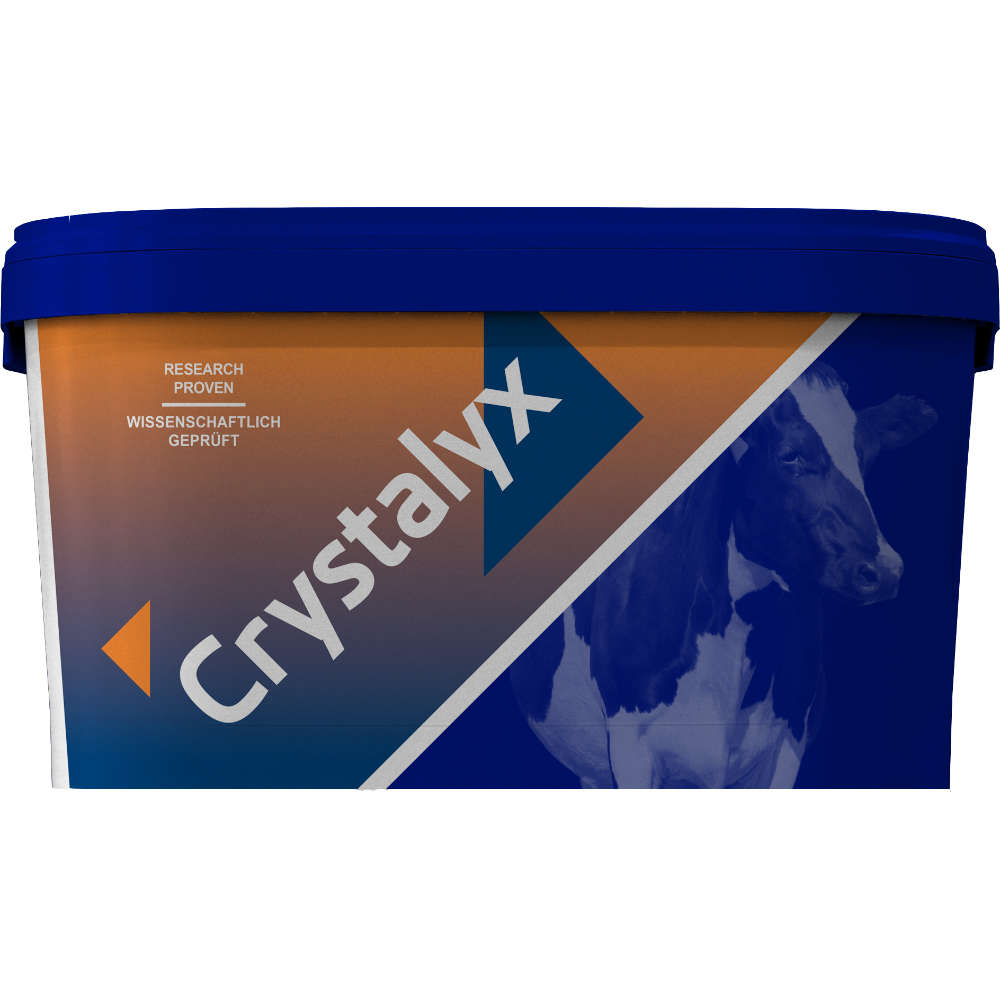 CRYSTALYX Trockensteher - CRYSTALYX
