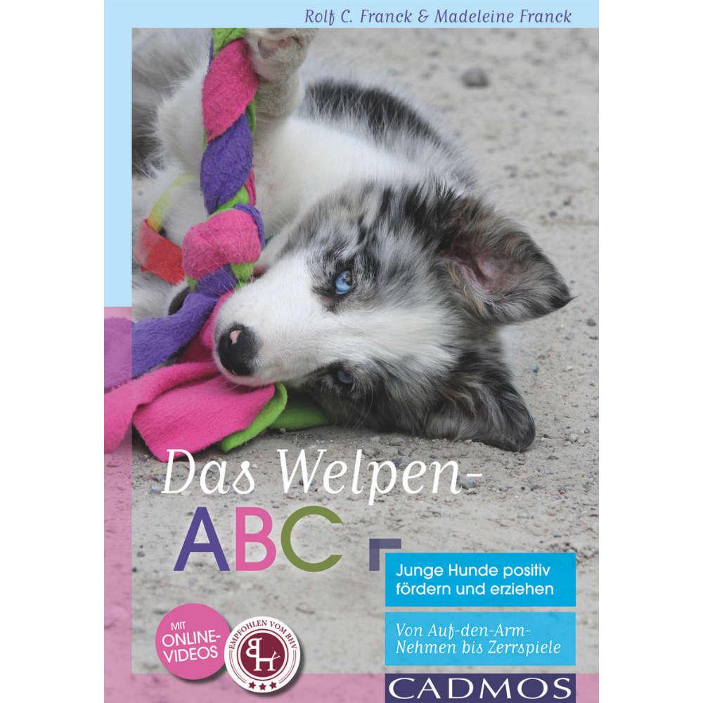 Grafik für Welpen-ABC in raiffeisenmarkt.de