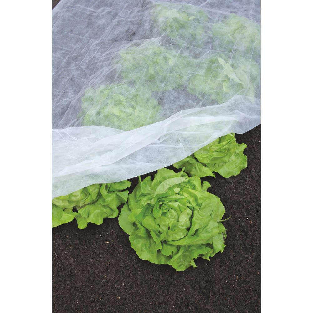 gartenkraft Fruehbeet-Vlies - Pflanzenanzucht