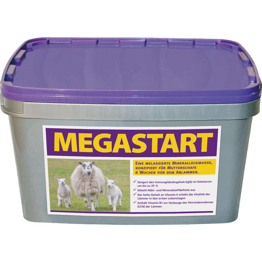 MEGASTART - CRYSTALYX